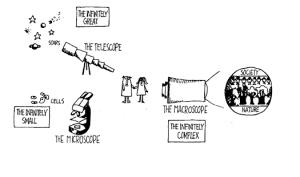 DeRosnay Macroscope Image